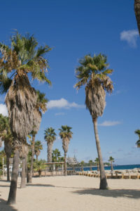 Grimaud das Juwel der französischen Riviera, Grimaud Seaside, 9